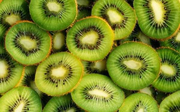 Kiwi Kostüm selber machen