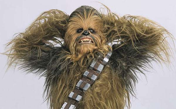 Chewbacca Kostüm selber machen