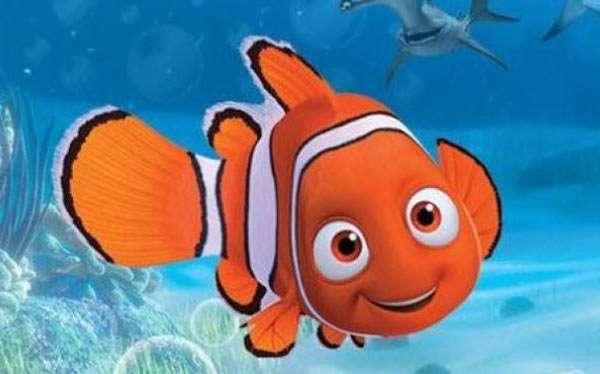 Findet Nemo Kostüm selber machen