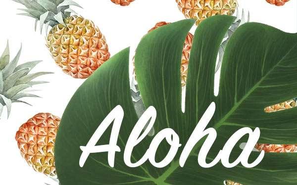 Hawaii Mottoparty