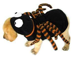 Spinne | Kostüm-Idee für Hunde zu Karneval, Halloween & Fasching