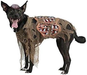 Zombie | Kostüm-Idee für Hunde zu Karneval, Halloween & Fasching