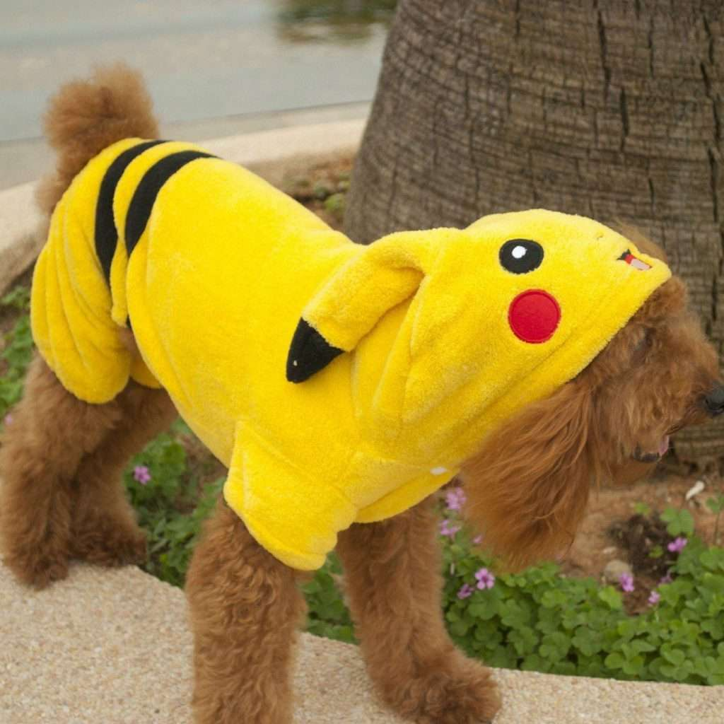 Hundekostüm Pikachu