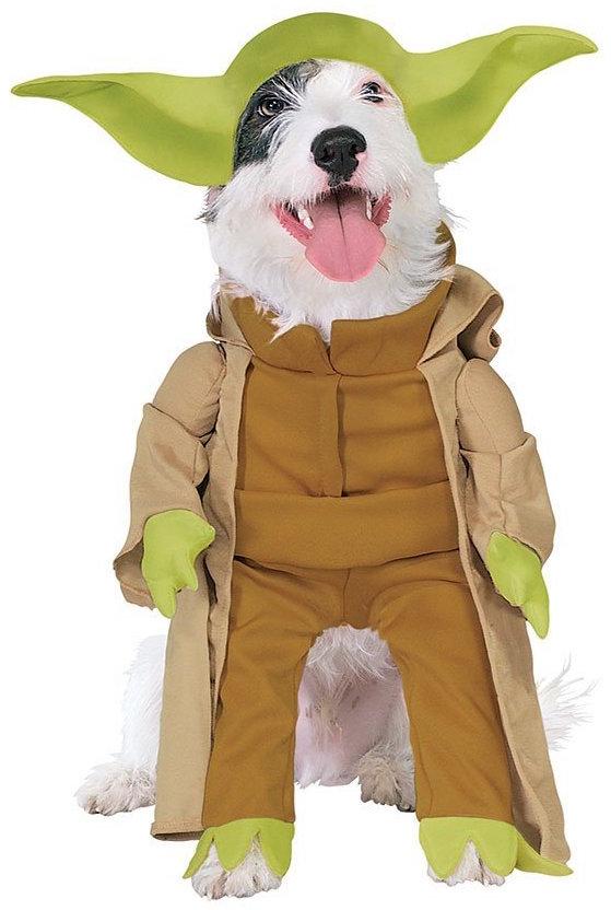 Star Wars Yoda | Kostüm-Idee für Hunde zu Karneval, Halloween & Fasching
