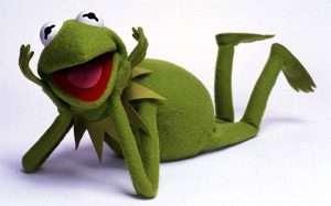 Sesamstraße Kermit der Frosch Kostüm selber machen | Kostüm Idee zu Karneval, Halloween & Fasching