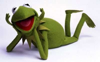 Sesamstraße Kermit Kostüm selber machen