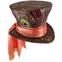Alice im Wunderland der Verrückte Hutmacher Kostüm selber machen - Hut
