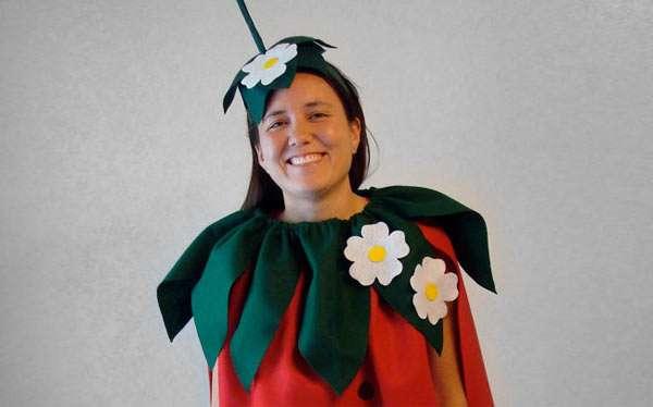 Erdbeere Kostüm selber machen