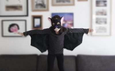 Fledermaus Kostüm selber machen