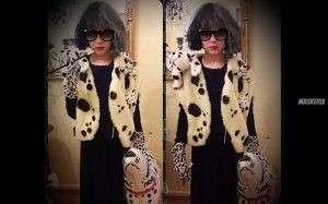 maskerix - 101 Dalmatiner Cruella de Vil Kostüm selber machen