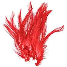 Amazon - Kostüm selber machen - Rote Federn