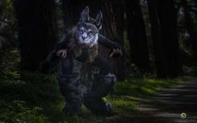 Werwolf Kostüm selber machen