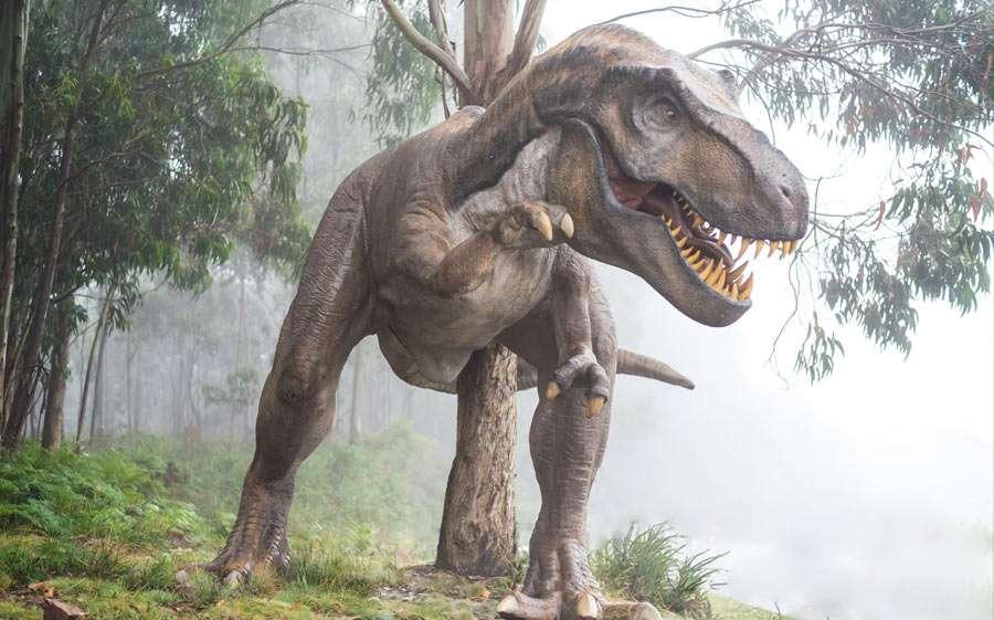 Dino Party » Ideen & Tipps für kleine & große Urzeitforscher